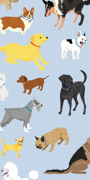 dogs design for planners
