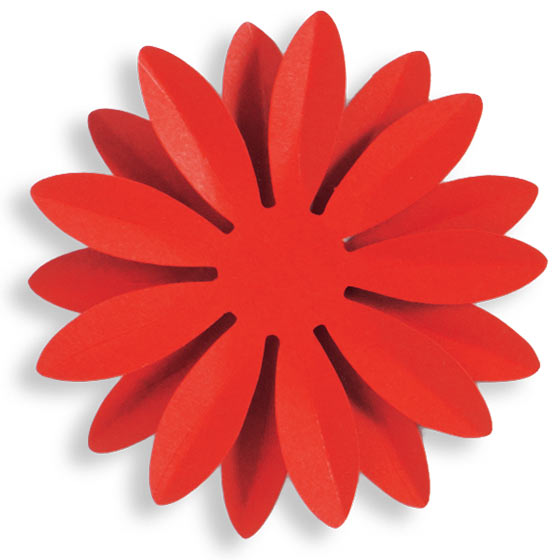 red paper daisy