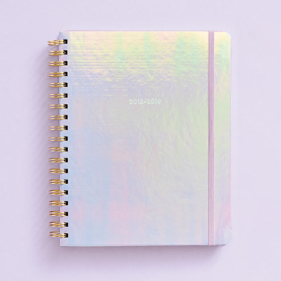 holographic planner