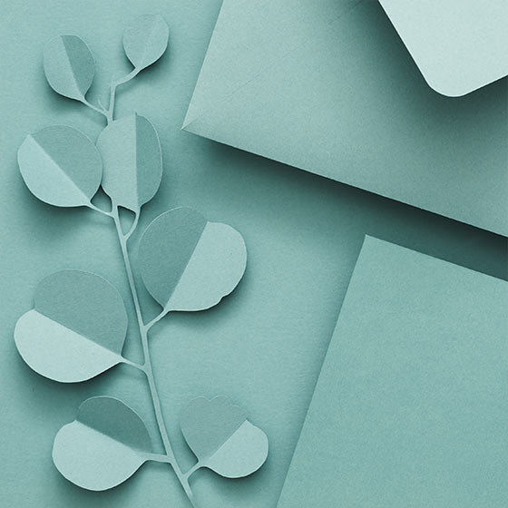 eucalyptus colored paper and envelopes