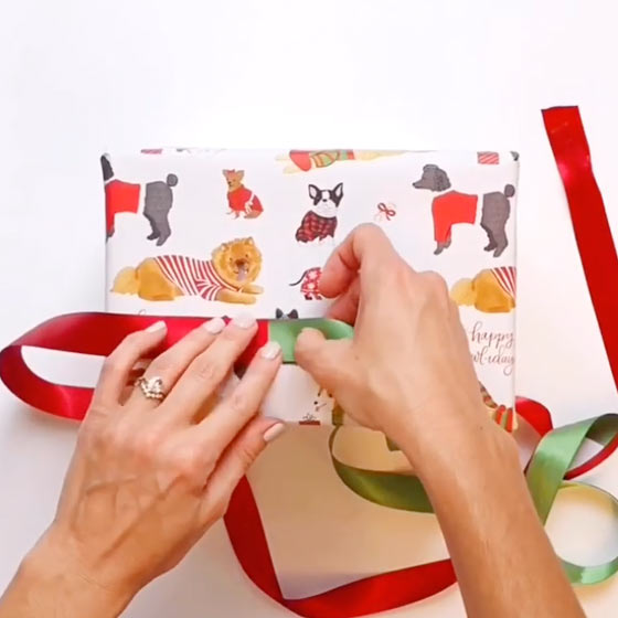 How to Use Your Ribbon Scraps Video by Paper Source