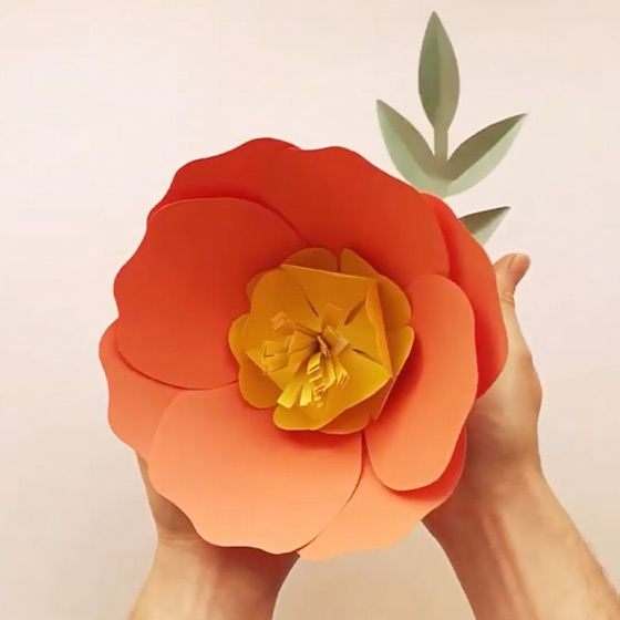 Paper Flower DIY Kit assembled on video.