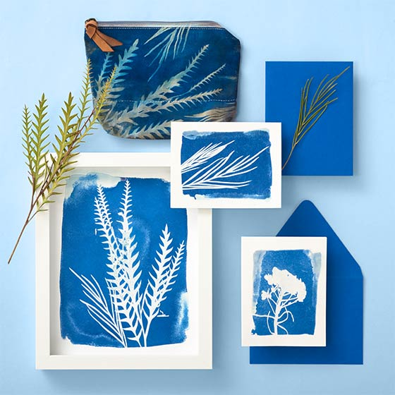 Paper Source Creativity Subscription featuring Cyanotype project for June 2021.