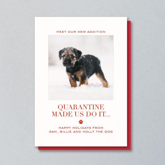 Custom Holiday Photo Card that reads, Quarantine Made Us Do It.
