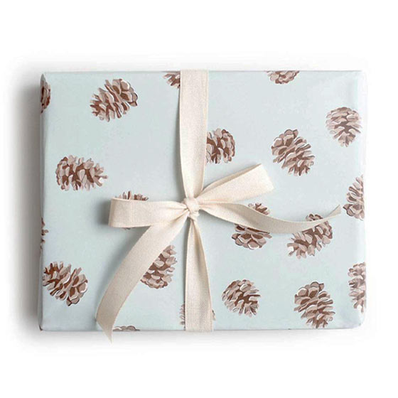 Wrapping paper with snow covered pinecones placed on a light blue background.